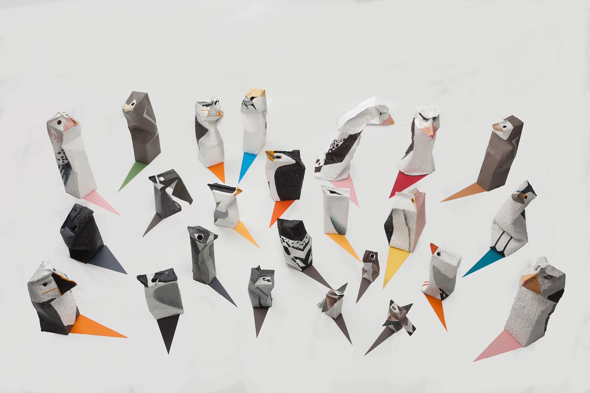 Madeleine Kelly Pelagic Birds 2017