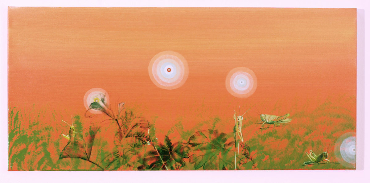 Madeleine Kelly West End Grasshoppers 2008 Oil on polyester 29 x 60 cm